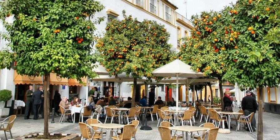Comer en el barrio de Santa Cruz de Sevilla