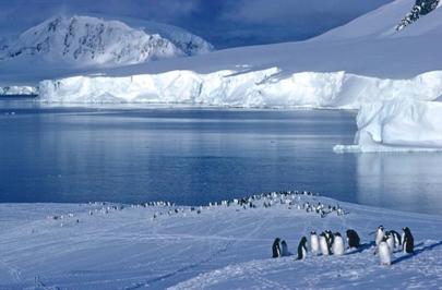 La Antártida pierde hielo