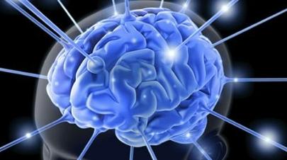 El cerebro evoluciona hasta la adolescencia