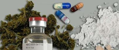 Las nuevas drogas contienen pelo de animal, insectos y hongos