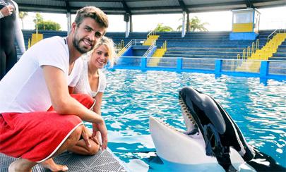 Piqué y Shakira esperan un bebé