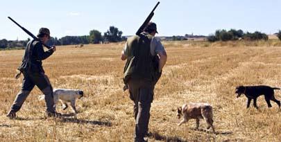 Subvención de 303.000 euros para enseñar a cazar a escolares de Castilla y León
