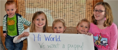 Un millón de 'likes' de Facebook por un perro