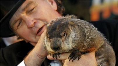 Piden pena de muerte para la marmota Phil