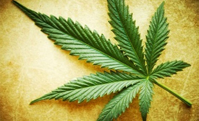 La marihuana baja el coeficiente intelectual