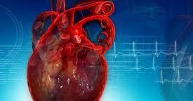 Tener bajo nivel educativo predispone a sufrir insuficiencias cardíacas