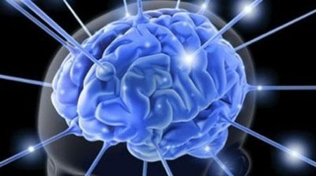 Estudio realizado en universidades muestra que somos cada vez menos inteligentes