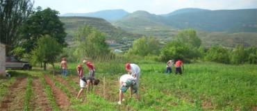 El Gobierno quiere incorporar a 15.000 jóvenes a la agricultura