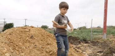 Niño de 4 años sale a buscar dinosaurios y encuentra fósiles de hace 100 millones de años