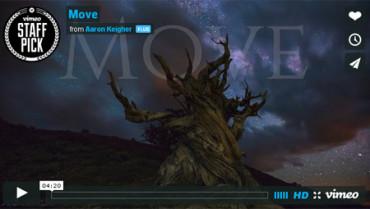 Move, el impresionante time lapse que nos muestra el movimiento que nos rodea
