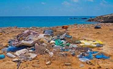 Más de 2.000 voluntarios limpian el litoral de Palma