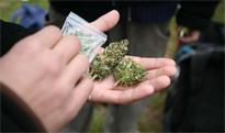 marihuana.jpg