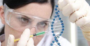 ADN1.jpg