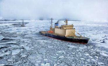 Artico.png