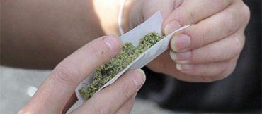 cannabis-11.jpg